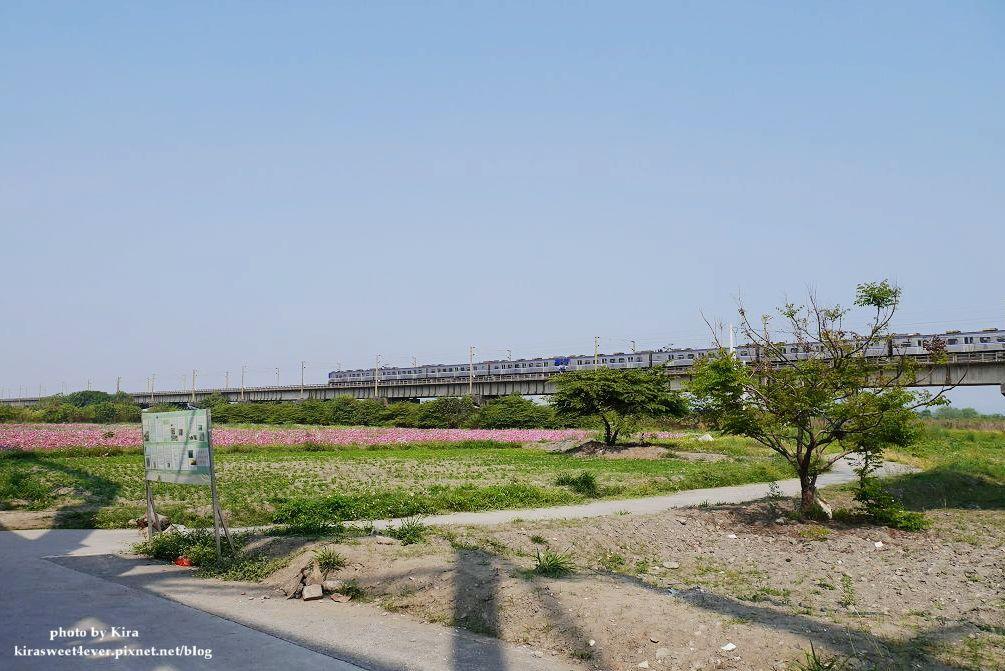 舊鐵橋 (22).jpg