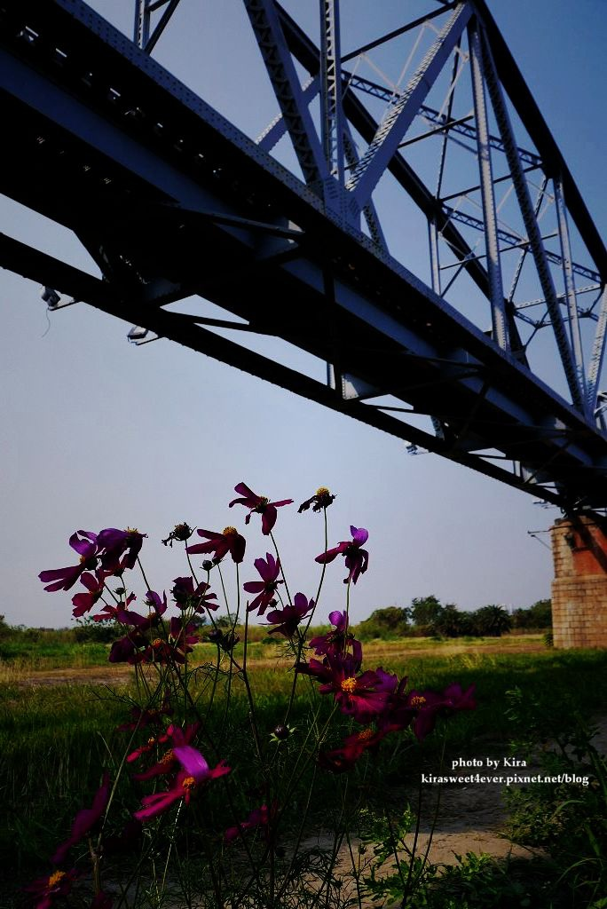 舊鐵橋 (28).jpg