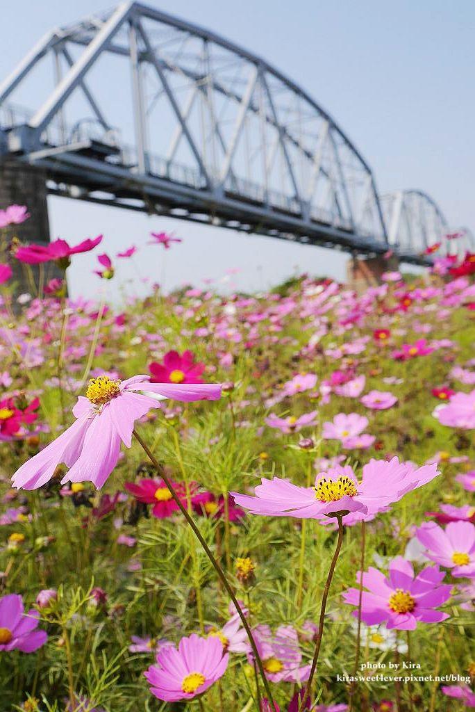 舊鐵橋 (30).jpg