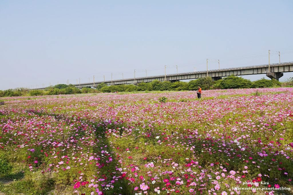 舊鐵橋 (29).jpg