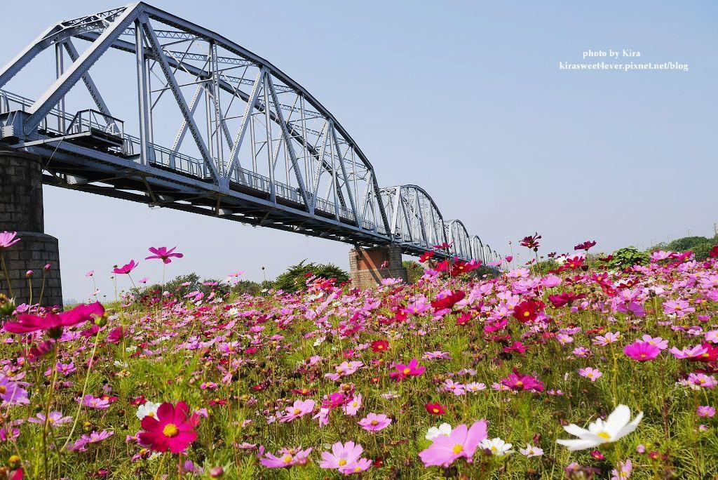舊鐵橋 (31).jpg