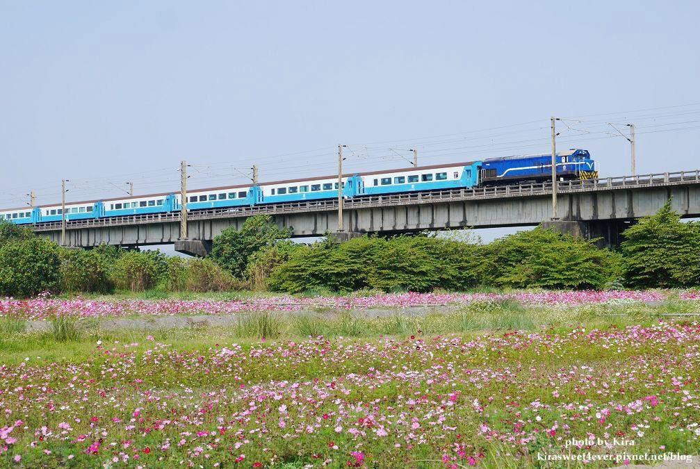 舊鐵橋 (37).jpg