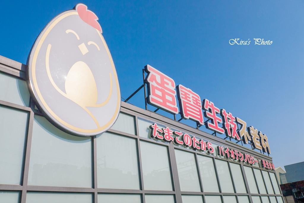 egg (02).jpg