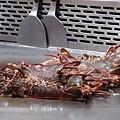 特別訂的活龍蝦