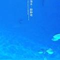 _DSC0319-1-frame.JPG