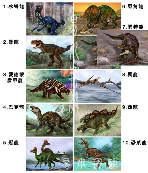 恐龍卡10圖.jpg