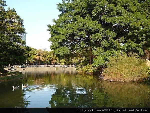 新竹景點8-公園水岸.JPG