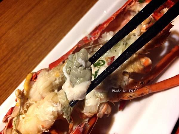 桀壽司 波士頓大龍蝦