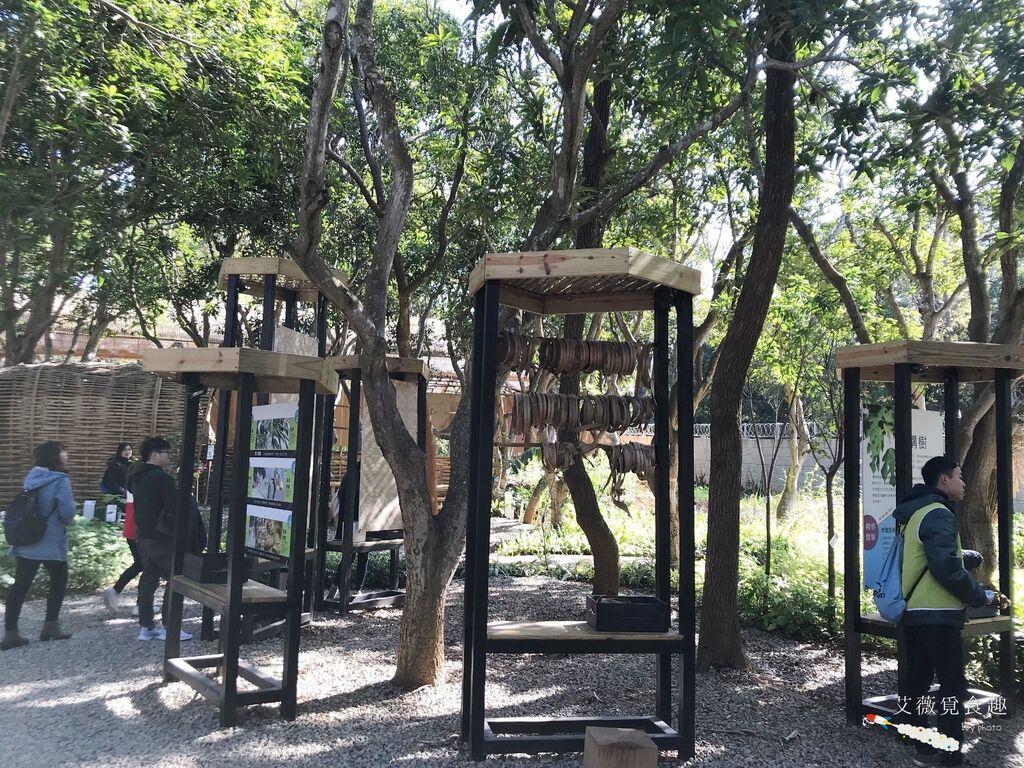 台中花博后里森林園區最強教戰攻略