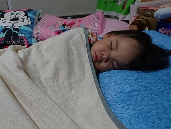【轉頭囍】有機棉呼吸抗螨防蚊毯