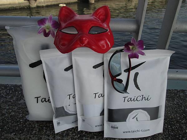 TaiChi素T