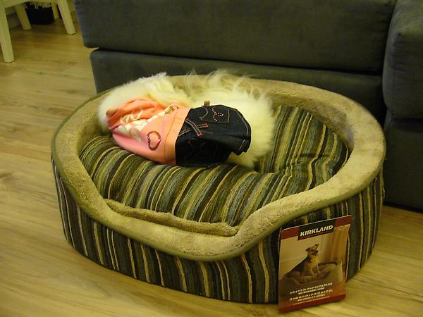 姐姐新床.JPG