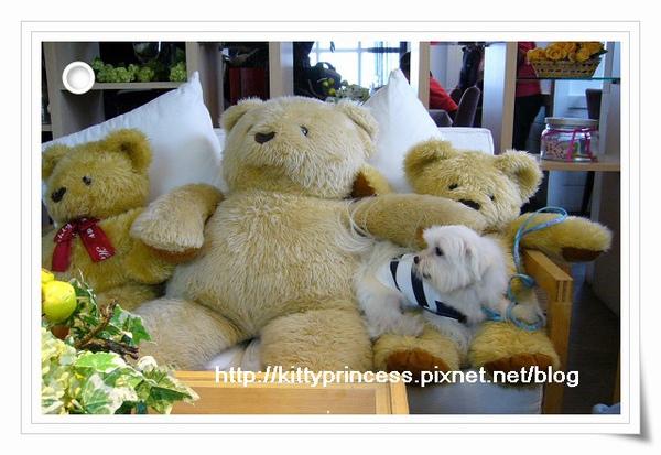 小熊坐在小熊身上
