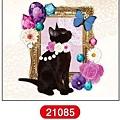 MW轉印貼紙 MW21085黑貓 代買價$155