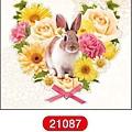 MW轉印貼紙 MW21087花框兔 代買價$155