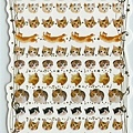 KJ貼紙 繽紛系列第1彈  KJ43621貓咪 $80
