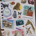 MW貼紙 寫真系列 MW72378動物相片 $75