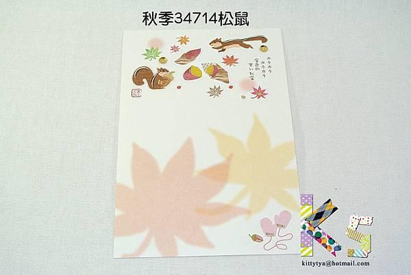 季節和紙明信片 秋季34714松鼠 $75