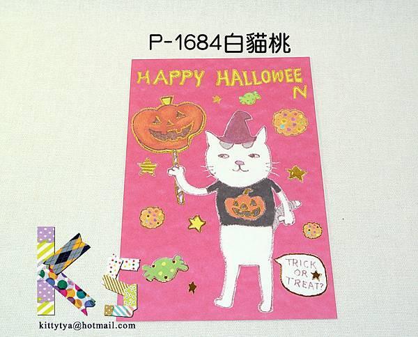 現貨~萬聖節明信片 P-1684白貓桃 $75