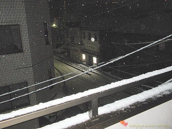 20100201 下雪了 (1).JPG
