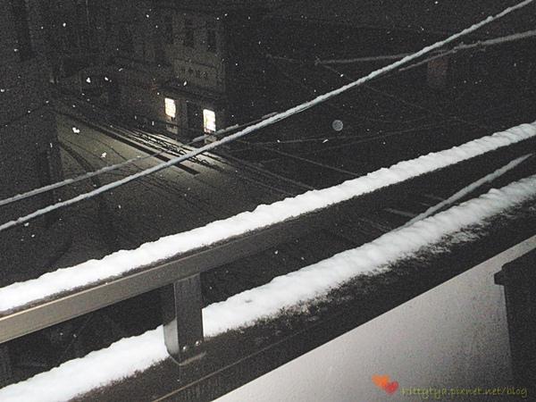 20100201 下雪了 (3).JPG
