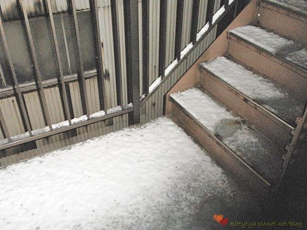 20100201 下雪了 (13).JPG
