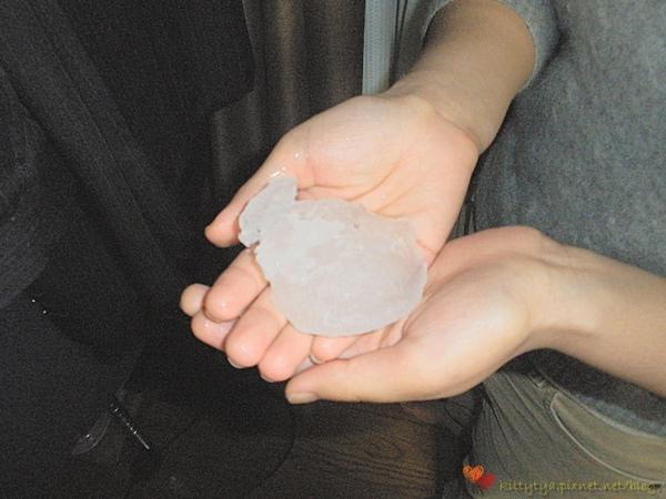 20100201 下雪了 (17).JPG