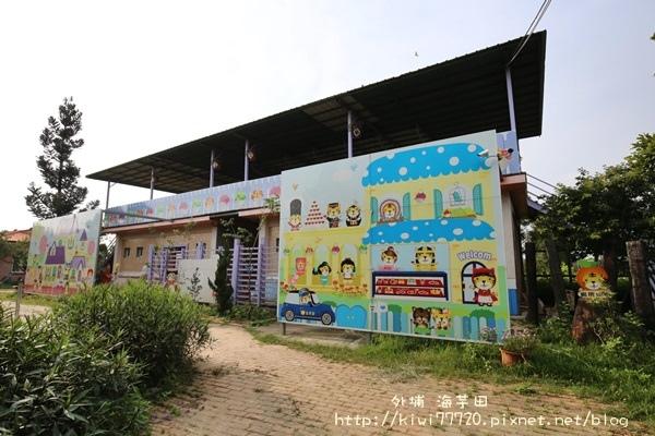 台中外埔海芋田_3875