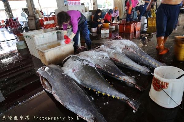 屏東東港漁會黑鮪魚專賣區3953