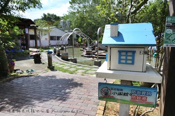 埔里桃米坑親水公園夏日玩水中部免費景點免費玩水景點南投景點062620_o