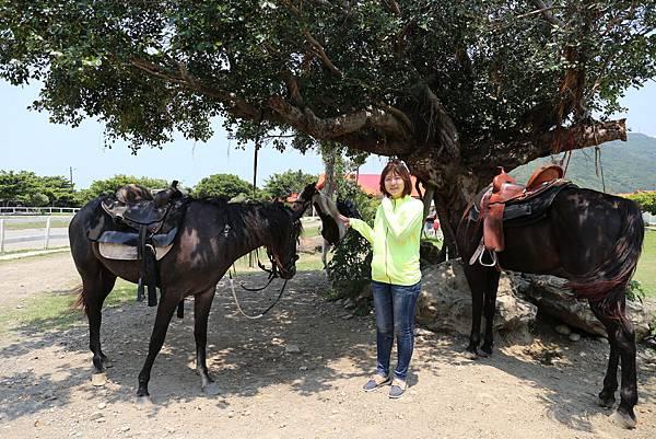 悠客馬場悠客馬術渡假村屏東車城籠埔騎馬住宿度假野外騎馬0512