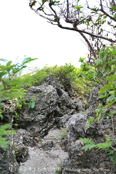 屏東墾丁小巴里島珊瑚礁岩灘恆春景點親子遊玩水0647