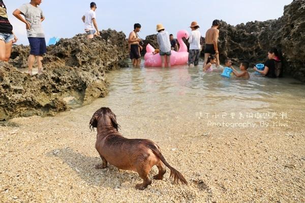 屏東墾丁小巴里島珊瑚礁岩灘恆春景點親子遊玩水0636