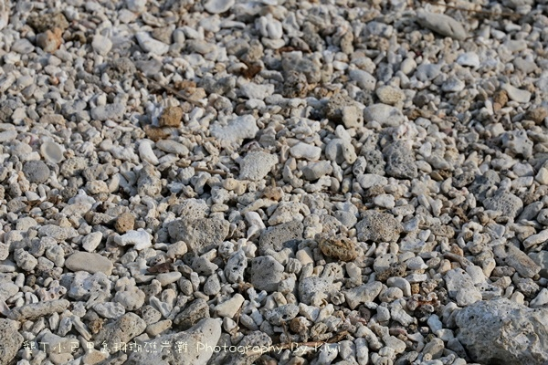 屏東墾丁小巴里島珊瑚礁岩灘恆春景點親子遊玩水0689