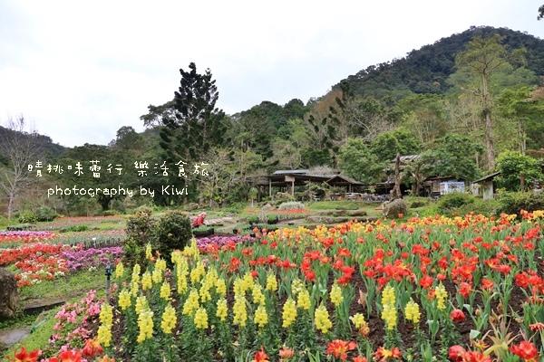 桃園桃源仙谷9573