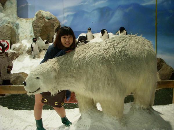 雪屋北極熊.jpg