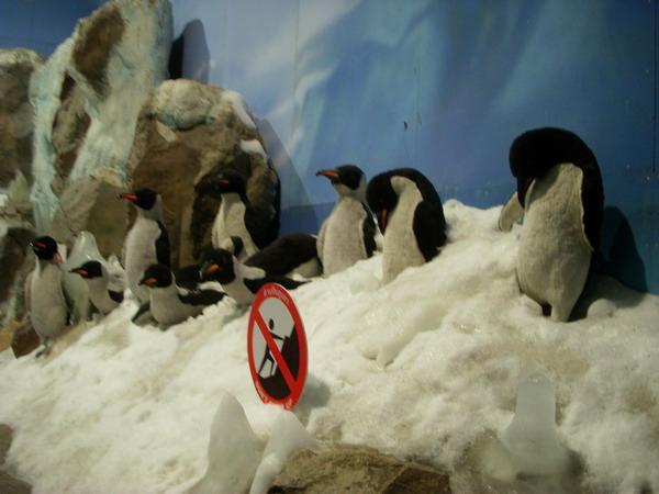 雪屋企鵝.jpg