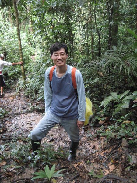 深入雨林.jpg
