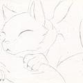 貓。睡.png