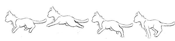 貓(草稿.png