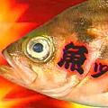 壽司王子預告15秒(6月1日)--魚眼
