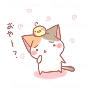 偏頭的貓.jpg