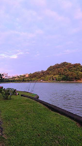 碧湖公園釣魚專區