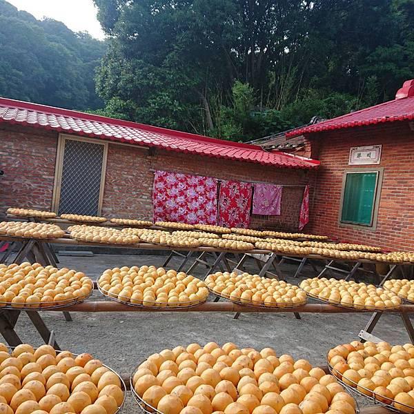 味衛佳柿餅觀光農場 傳統紅瓦屋前曬柿餅