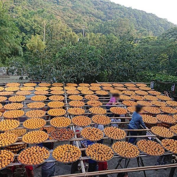 大大滿足大家想當網美的心態 味衛佳柿餅