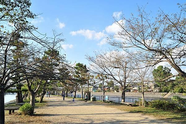日本出差記行0326-京都宇治.JPG