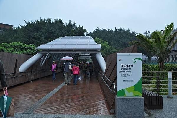 雨中花博159.JPG