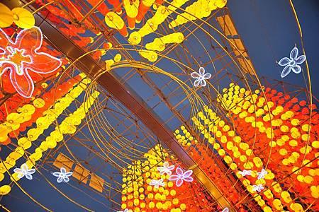 台灣燈會在苗栗003.jpg