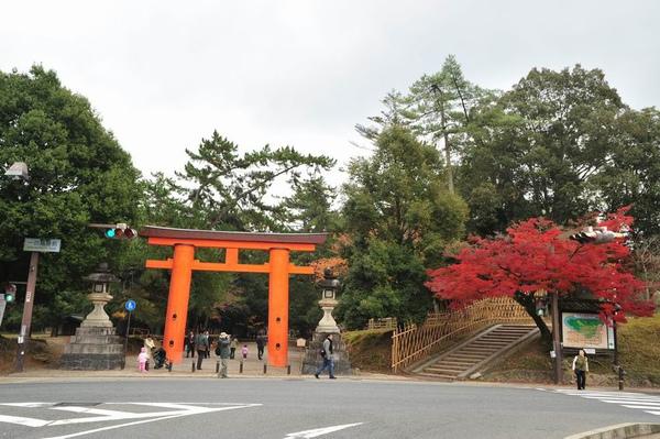 日本出差記行0039-奈良.JPG
