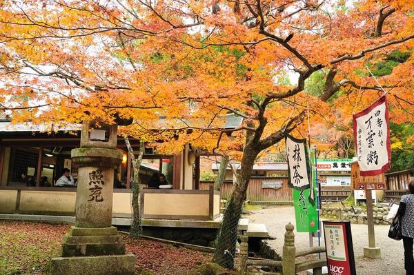 日本出差記行0123-奈良.jpg